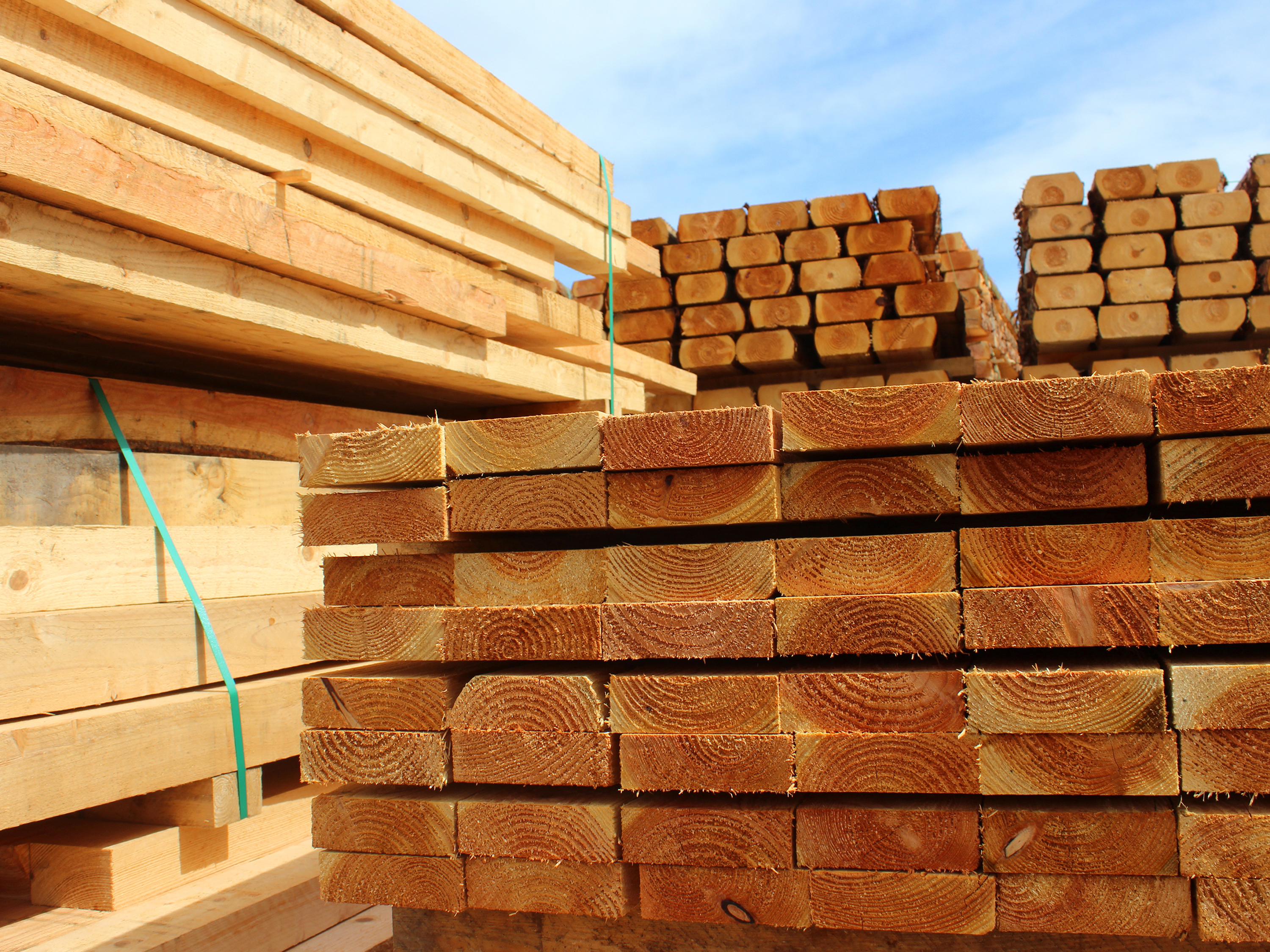 Sussex Timber Supplies